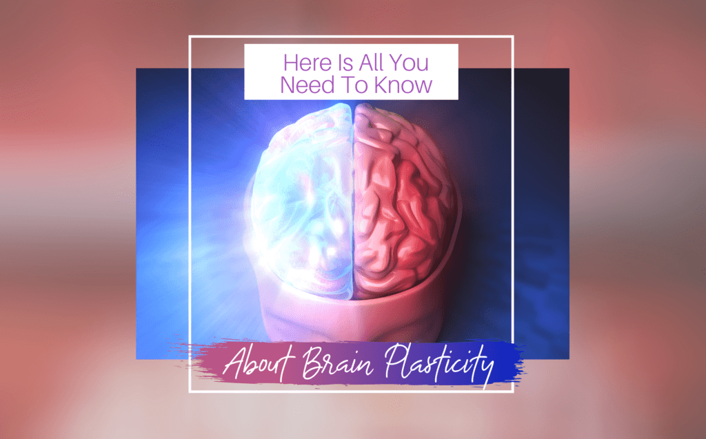 Here Is All You Need To Know About Brain Plasticity