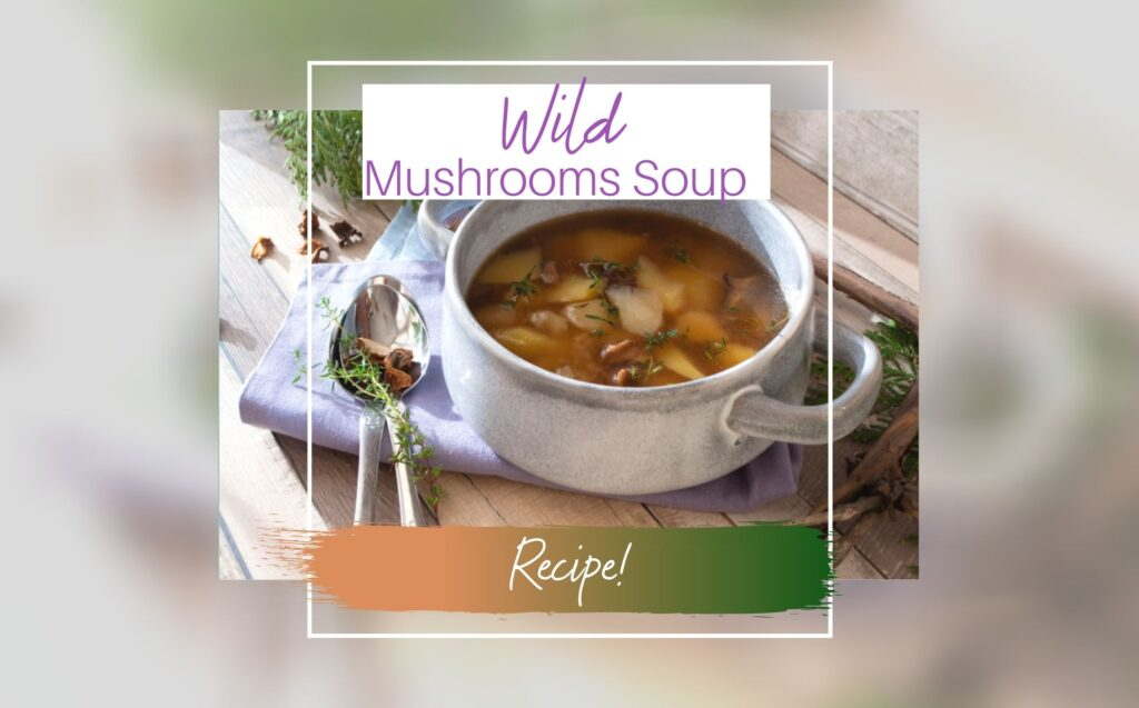 Wild Mushrooms Recipe